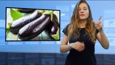 • Dlaczego warto jeść bakłażana? • Jakie jedzenie chroni wątrobę? • Poznaj właściwości cytryn • Ukradł kasownik z autobusu miejskiego • Dlaczego nie należy smażyć ryby na oleju słonecznikowy?