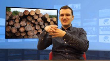 Jakie powinno być dobre drewno na opał?