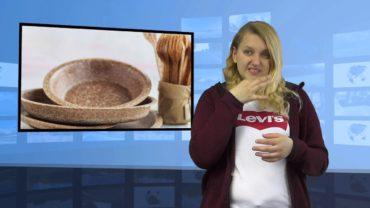 Biodegradowalne naczynia polskiej firmy bardzo popularne