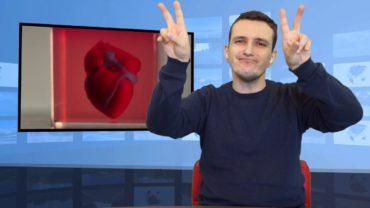 Serce zrobione w drukarce 3D