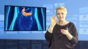 Trzustka polskich naukowców może wyleczyć cukrzycę?