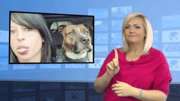 Stado psów zagryzło kobiete